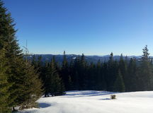 Vinterukrainare Carpathians Arkivfoto