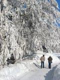 vinterunderland Arkivbild