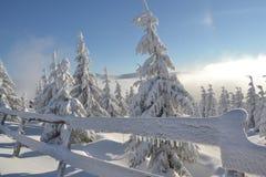 Vinterunderland i de jätte- bergen royaltyfria bilder