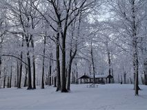 Vinterunderland på Brigham County Park royaltyfri bild