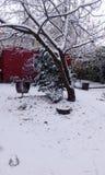 Vinterunderland på skolan Arkivfoto
