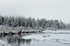 Vinterunderland wyoming Arkivbilder