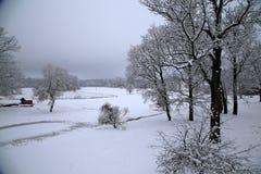 Vinterunderlandlandskap i Lettland Royaltyfri Foto