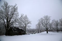 Vinterunderlandlandskap i Lettland Royaltyfri Fotografi
