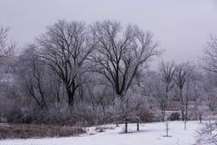 Vintervädersnö och is arkivfoto