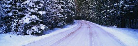 Vinterväg Royaltyfri Bild