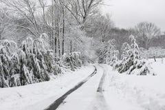 Vinterväg Royaltyfria Foton