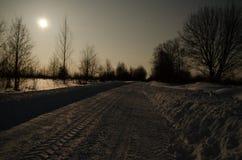 Vinterväg i månskenet royaltyfria bilder