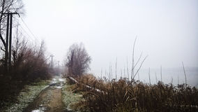 Vinterväg nära sjön Royaltyfria Foton