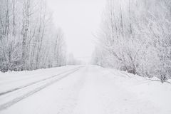 Vinterväg under morgonfrosten royaltyfria bilder