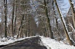 Vinterväglandskap Royaltyfri Fotografi