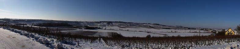 Vintervärld Rheinhessen Royaltyfri Bild