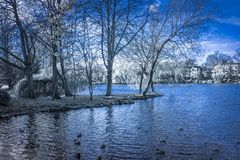 Vintervatten slösar royaltyfria bilder