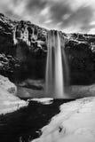 Vintervattenfall Skogafoss i Island Royaltyfri Foto