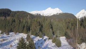 Vintervildmarklandskap i Alaska lager videofilmer