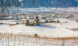 Vintervingårdlandskap som är dolt med snö Trentino Alto Adige, Italien Huvudsakliga ekonomiska faktorer är vinodling längs den sö Arkivbilder