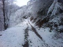 Vinterviskning Royaltyfria Foton