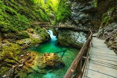 Vintgar峡谷和绿河,流血,特里格拉夫峰斯洛文尼亚 库存照片