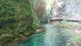 Vintgar峡谷斯洛文尼亚 库存照片