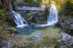 Vintgar峡谷,斯洛文尼亚,美好的环境地方 库存图片
