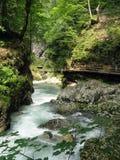Vintgar峡谷 免版税库存照片