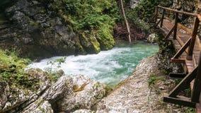Vintgar Словения Стоковая Фотография RF