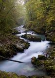 Vintgar, Eslovenia Imagen de archivo libre de regalías