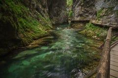 Vintgar Gorge Stock Images