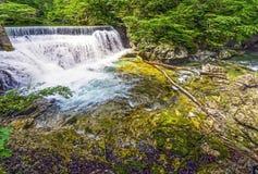 Vintgar gorge in Bled,Slovenia Stock Photos