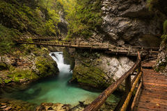 Vintgar Gorge canyon with wooden walkway Stock Image