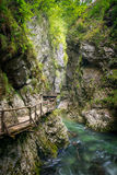 Vintgar Gorge II Royalty Free Stock Photography