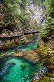 Vintgar Gorge Stock Photo