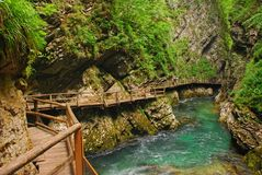 Vintgar Gorge, Bled, Slovenia with wooden walkway Zumer Galleries at the side & Radovna river