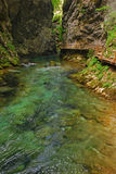 Vintgar Gorge on a Morning Day Royalty Free Stock Photos