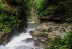 Vintgar gorge near Bled. Royalty Free Stock Image