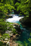 Vintgar Gorge near Bled in Slovenia. Royalty Free Stock Image