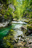 Vintgar Gorge Royalty Free Stock Photography