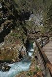 Vintgar Gorge Royalty Free Stock Image