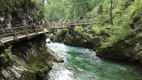 Vintgar gorge,radovna river,slovenie 144308 stock video