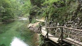 Vintgar gorge,radovna river,slovenie 150734 stock video