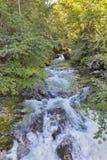 Vintgar gorge and rapid river Radovna. Bled,Slovenia. Royalty Free Stock Photo