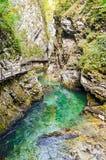 Vintgar Gorge, Slovenia Stock Images