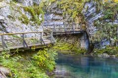 Vintgar gorge, Slovenia Royalty Free Stock Photos