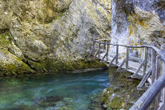 Vintgar gorge, Slovenia Stock Photography