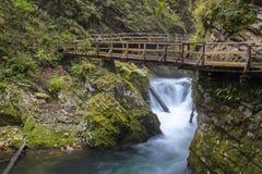 Vintgar gorge, Slovenia Royalty Free Stock Image