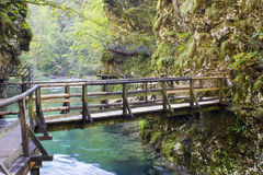 Vintgar gorge, Slovenia Royalty Free Stock Photos
