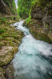Vintgar Gorge, Slovenia Royalty Free Stock Photo