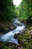 Vintgar Gorge in Slovenia Julian Alps Stock Photos