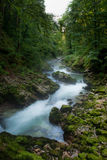 Vintgar Gorge in Slovenia Julian Alps Royalty Free Stock Photography