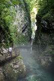 Vintgar Gorge in Slovenia Julian Alps Stock Photography